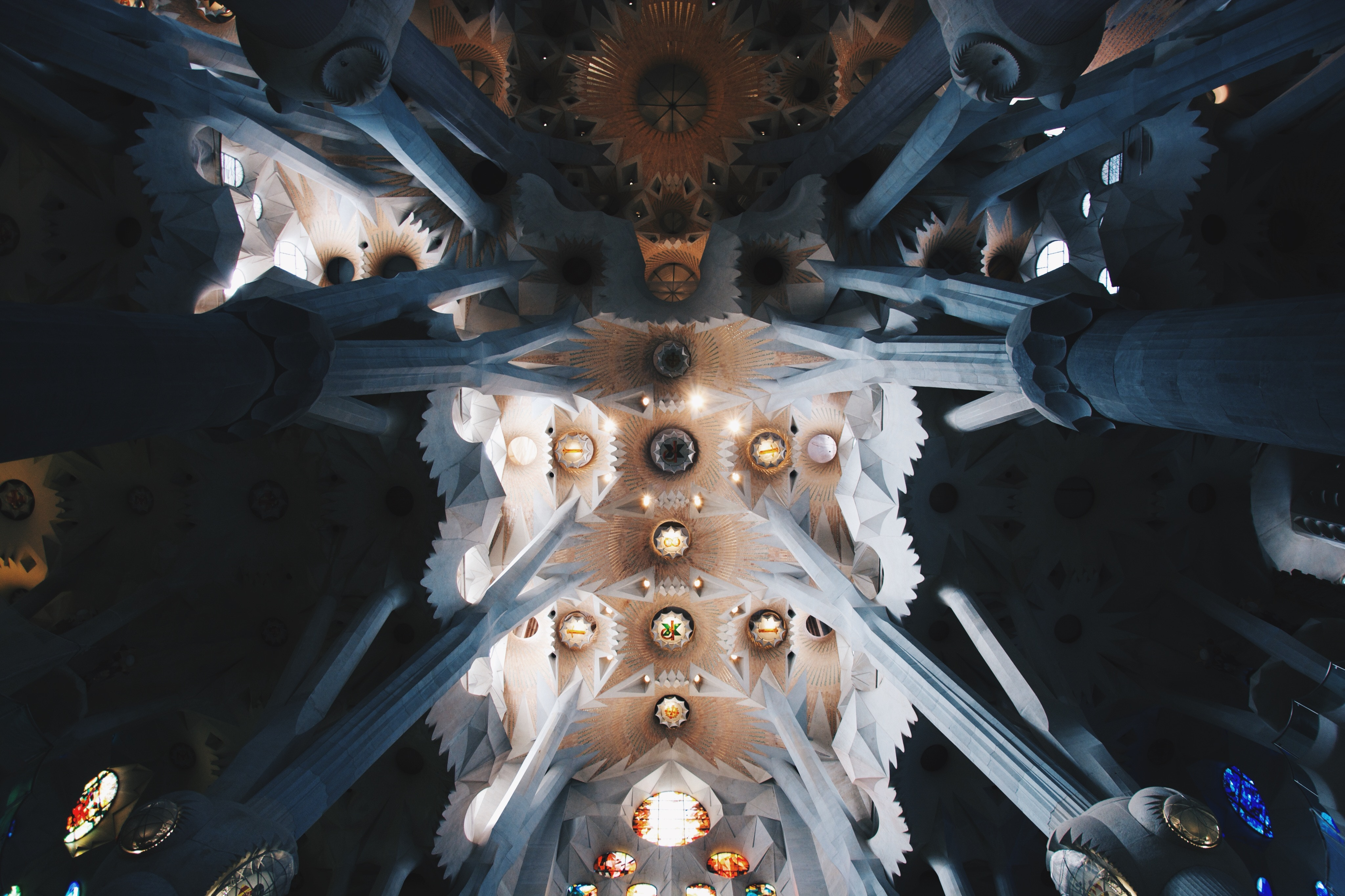 an image of the ceiling of the sagrada familia